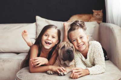 Pets are Family Members Too
